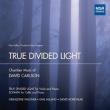 truedividedlight_110
